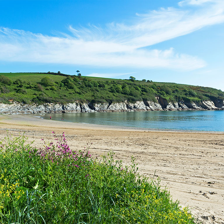 Explore our Devon properties